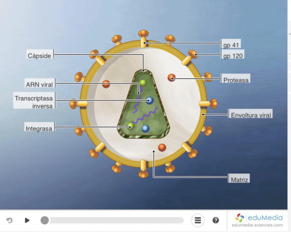 Edumedia portal de ciencias